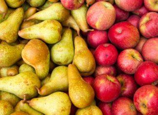 Уборка и хранение яблок и груш