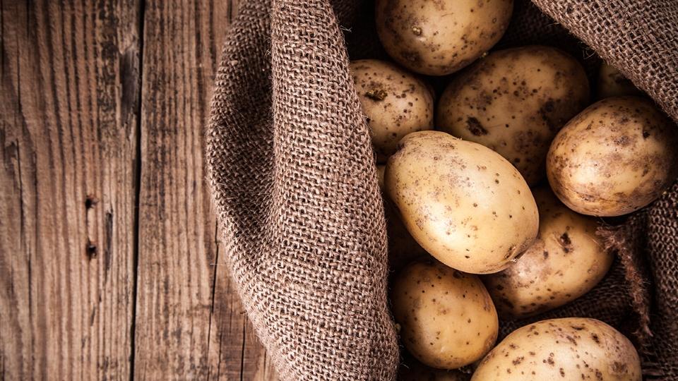 Хранение картофеля в зимний период