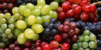 Виноград - секреты выращивания лозы