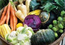 подзимний посев овощных