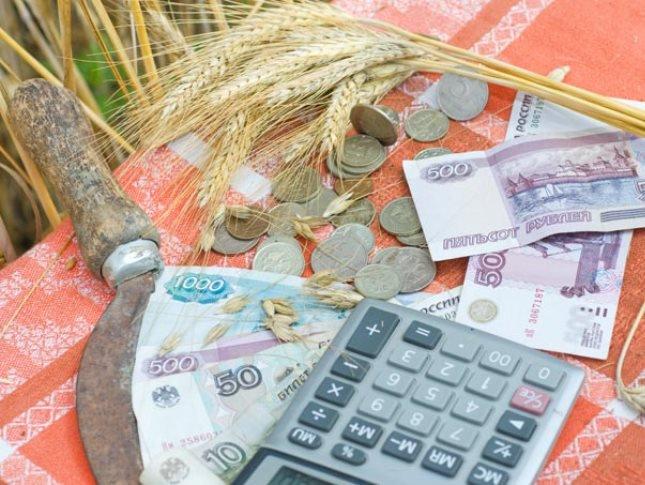 Аграрии смогут получить кредиты на 2,2 млрд. рублей под 5% с помощью краевого бюджета