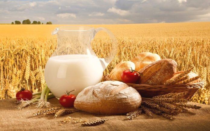 Ткачев поздравил фермеров с их профессиональным праздником