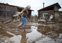 В Вологодской области введут режим ЧС в сельском хозяйстве