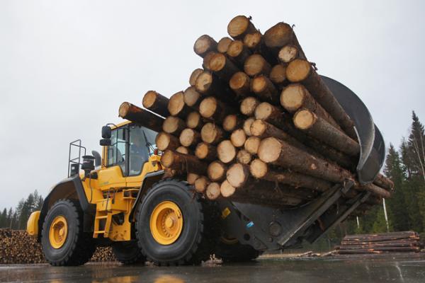 Лесопромышленный комплекс Забайкалья развален полностью