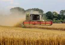 Минсельхоз изменит программу развития сельского хозяйства