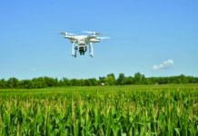 Производство дронов для сельского хозяйства появится в Узбекистане