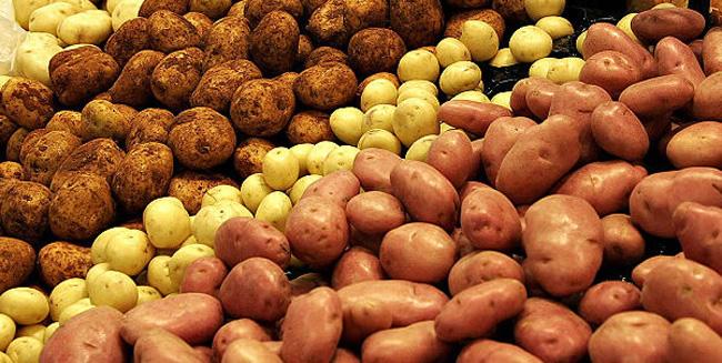 Лучшие картофельные сорта и их описание