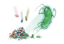 Резистентность к антибиотикам - пути решения проблемы