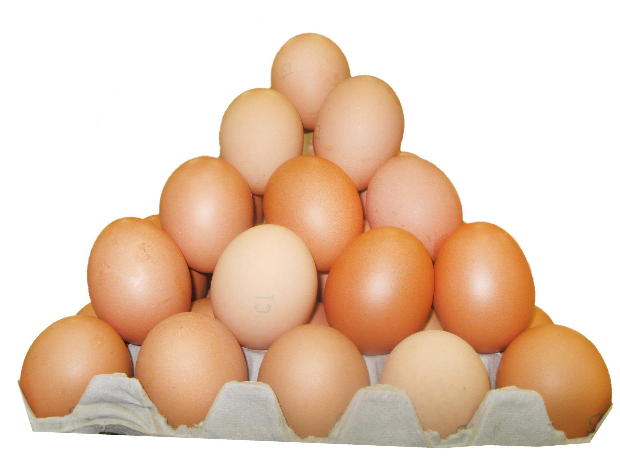 Куриные яйца: немного статистики