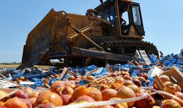 В Дагестане уничтожена партия запрещенной к ввозу сельхозпродукции