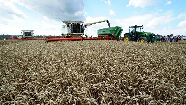 В Подмосковье объем господдержки аграриям вырастет в 2018 году на 20%