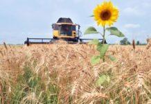 Кубань поможет Крыму реанимировать сельское хозяйство