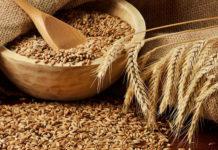 Медведев заявил о рекордном урожае зерна за всю историю России