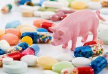Применение антибиотиков в сельском хозяйстве будут жестко контролировать