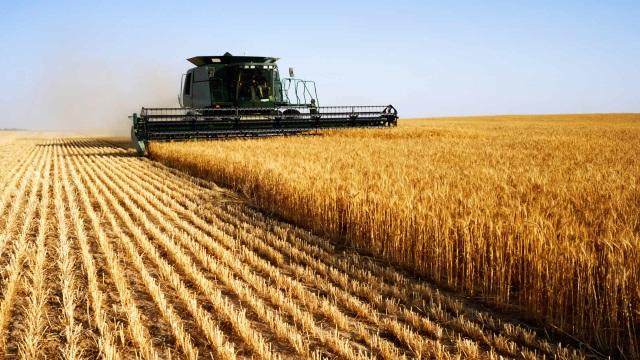 Путин в пятницу в Липецкой области обсудит проблематику сельского хозяйства
