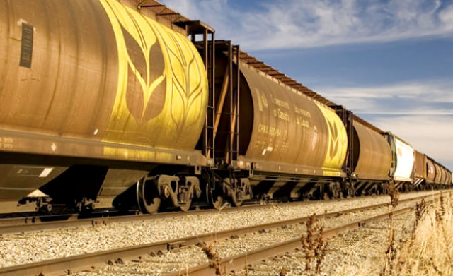 Перевозки зерновых грузов в России должны получить приоритет