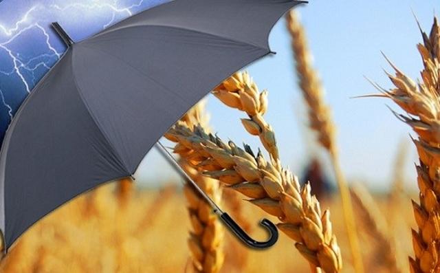 Страхование сельского хозяйства