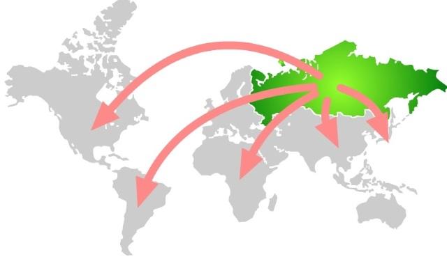 Экспорт органической сельхозпродукции из России: заказов гораздо больше, чем продукции