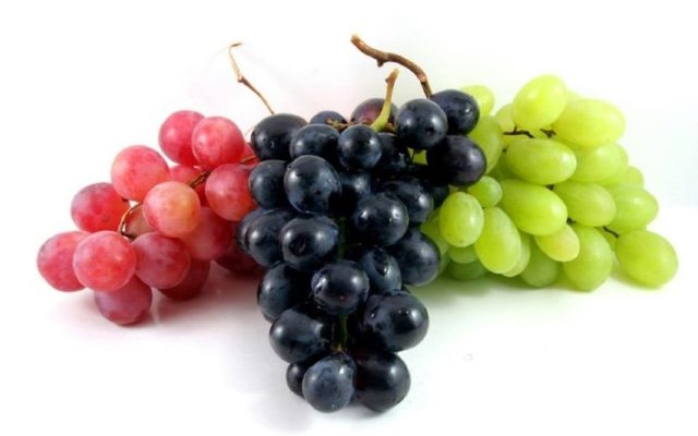 Выращивай виноград — получай хороший урожай!