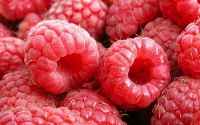 Эффективное выращивание сладкой малины на ваших грядках