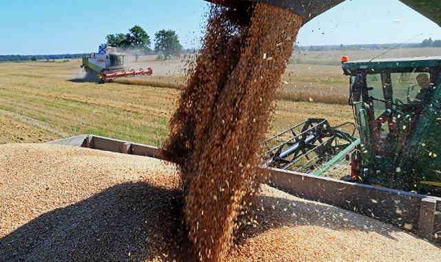 Посол Франции в России призвала к совместному развитию сельского хозяйства