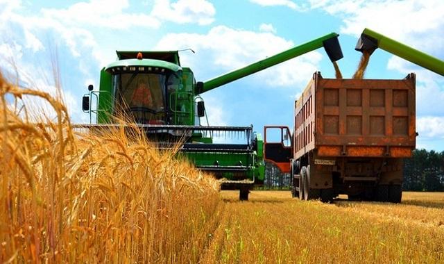 Тульская область в 2017г увеличила сбор зерновых на 20%