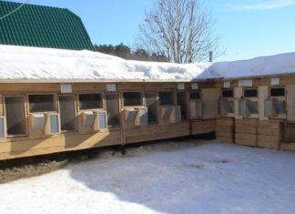 Зимнее содержание кроликов
