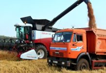 Ставрополье экспортирует 5,5 млн тонн зерна урожая 2017 года