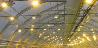 Освещение теплиц: светодиодные, натриевые и другие лампы