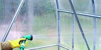 Обработка и дезинфекция теплицы из поликарбоната осенью