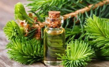 Алтай — главный российский экспортер экзотических растительных масел