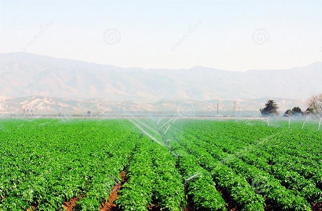 Информация важна для фермеров как льготные кредиты