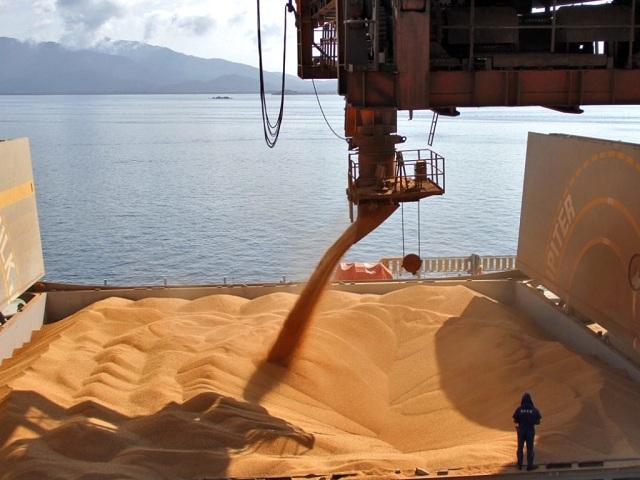 Прогноз экспорта российского зерна урожая 2018 года повышен до 53 млн тонн