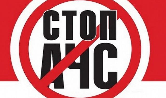 Очаг АЧС выявлен впервые в 2018г во Владимирской области