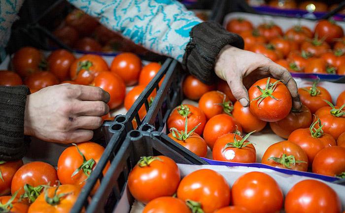 Россельхознадзор с 5 марта разрешает ввоз овощей из Турции