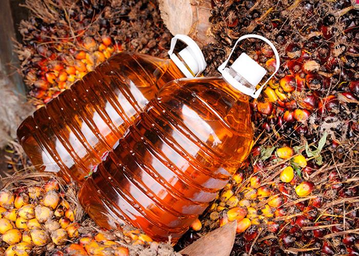 Кто в России «крышует» пальмовое масло