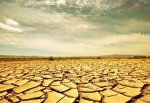 Своими руками: пустыни вместо черноземов