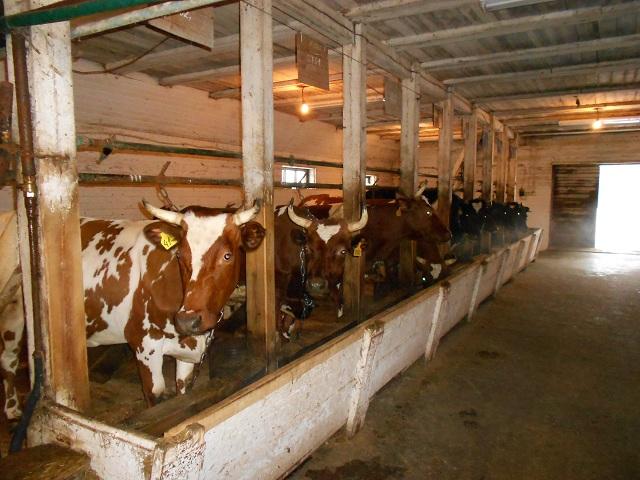 Министерство сельского хозяйства помогает начинающим фермерам