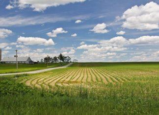 """На """"дальневосточных гектарах"""" построят новые поселки"""