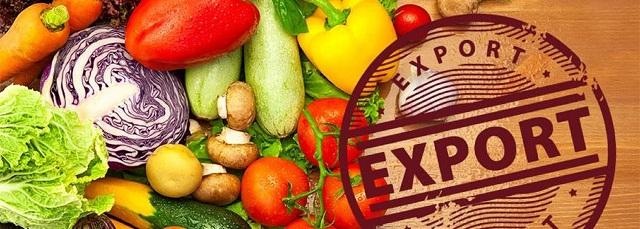 Правила нового экспортного регулирования обсудили в Правительстве РФ
