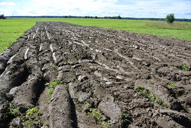 Природа испытывает российских аграриев на прочность