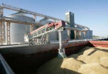Ставропольский край заинтересован в расширении зернового экспорта в Индию