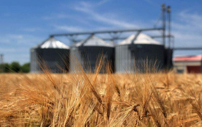 Стратегия развития фермерства в России — это союз власти и аграриев