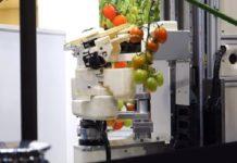 В Японии убирать томаты будут роботы