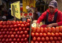 треть турецких поставщиков томатов нарушают фитосанитарные требования