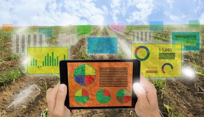 Иннополис разрабатывает технологии для точного земледелия