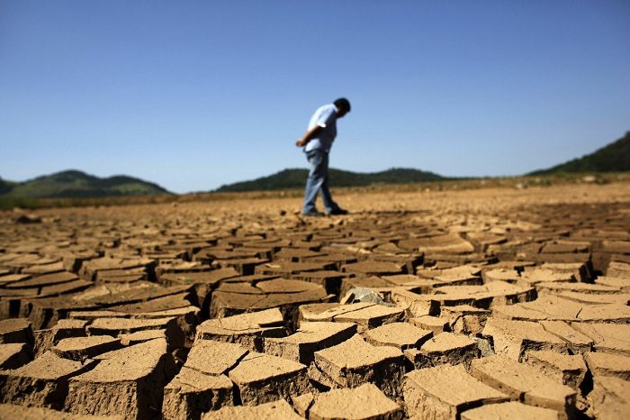 Из-за засухи Крым соберет вдвое меньше зерна