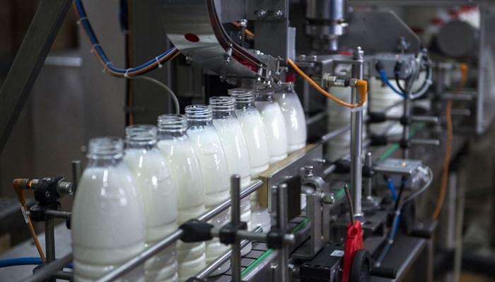 «ЭкоНива» построит молокозавод в Ленинградской области