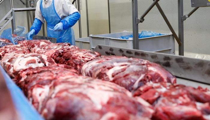 Эксперты прогнозируют в 2018 году снижение импорта мяса в Россию до 40% и рост экспорта — на 30%