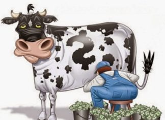 Молочных трейдеров в Татарстане признали виновными в сговоре, им грозят оборотные штрафы